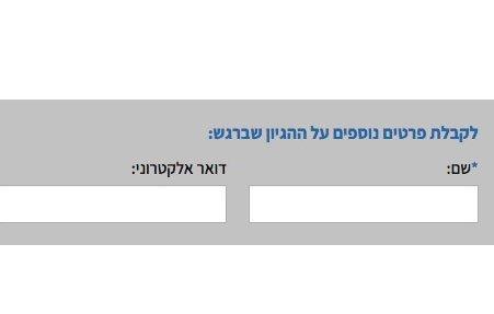 עיצוב טופס לידים באתר